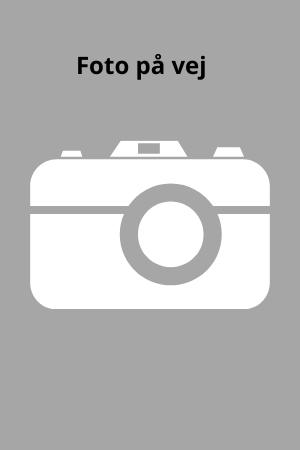 FotoPaaVej300-450